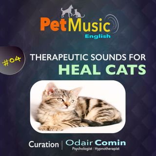 #04 Therapeutic Sounds for Healing Cats | PetMusic