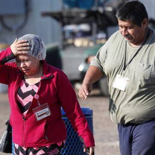 Hay 8 mexicanos detenidos tras redadas en EU