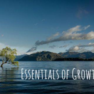 Essentials of Emotional Growth