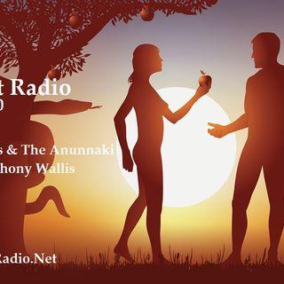 Episode 110  Angels, Aliens & The Anunnaki HUMAN ORIGINS with Paul Wallis