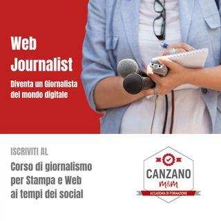 web journalist