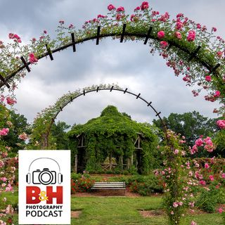 The B&H Photography Podcast/OPTIC Conference Photo Walk