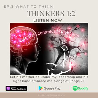 2nd Level THINKERS: Conquering The Path Of Purpose After Getting in Wrong
