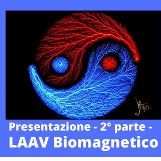 LAAV Biomagnetico - Presentazione parte 2