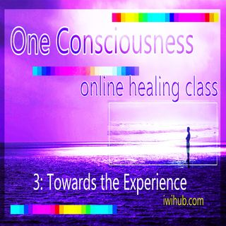 One Consciousness II: Towards the experience