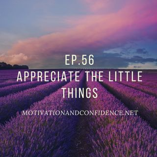 Ep. 56 Appreciate the little things
