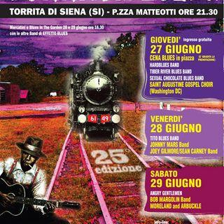Speciale Torrita Blues Festival 2013