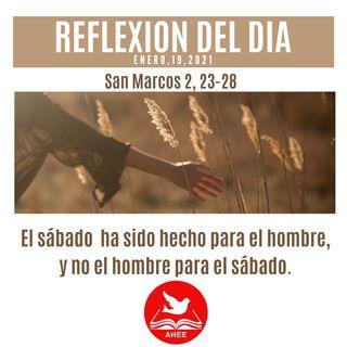 El Sábado ha sido hecho para el hombre, y no el hombrepara el Sábado Marcos 2, 23-28