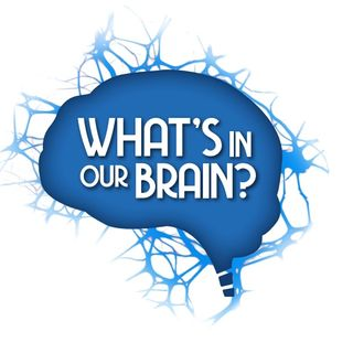 00. What's In Our Brain?
