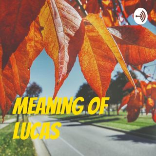 Intro-to-Meaning-of-Lucas--93249689a3766
