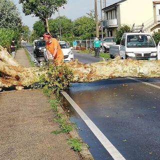 Maltempo nella notte, danni da grandine nel Vicentino. Allerta della Regione fino alle 24