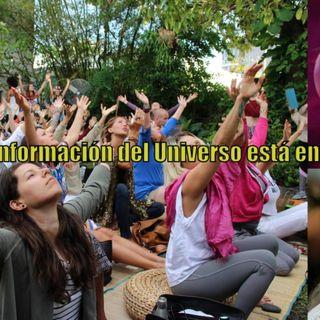 #114 Toda la información del Universo está en tu corazón #DrunvaloMelchizedek #Toroide #Koguis