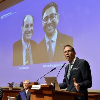 Nobel per la Medicina 2021 a Julius e Patapoutian, per gli studi sui recettori