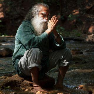 From Creation to Creator - Sadhguru