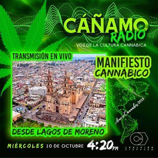 Canamo Radio 420 Americannabis