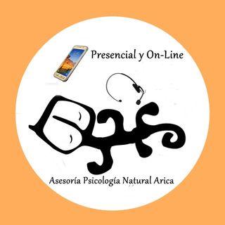 Asesoría Psicología Natural Arica