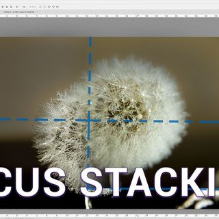 Hands-On Photography 49: How To Focus Stack Your Scene