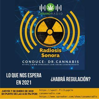 Radiosis Sonora Numero 21