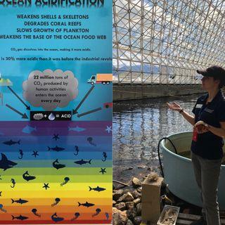 S2:E4  Bioshphere_2_Ocean and Rainforest in the Arizona Desert