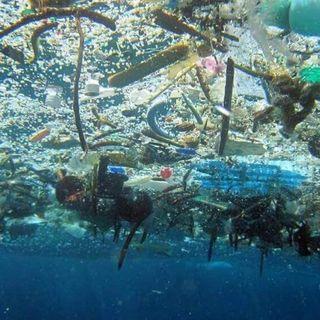#castelsanpietroterme Plastic in the sea