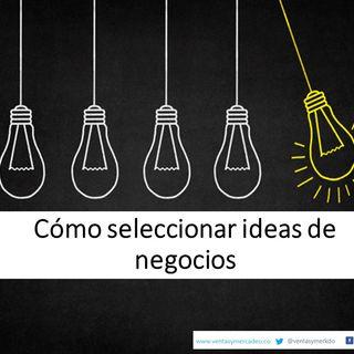 Cómo seleccionar ideas de negocios
