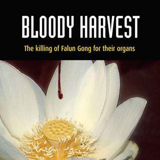 Ep.157 – Organ Harvesting in China