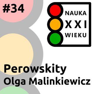 Perowskity - Olga Malinkiewicz