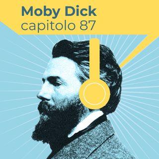 Moby Dick, Capitolo 87: La Grande Armada