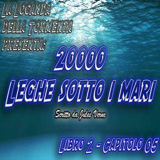 20000 Leghe sotto i mari - Parte 2 - Capitolo 05