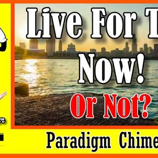 Live For The Now, or Not? Is it A Bad Lifestyle? | Paradigm Chimes  #paradigmshift #now