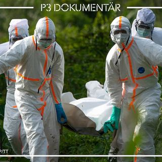 Ebolaviruset