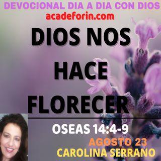 DIOS NOS HACE FLORECER