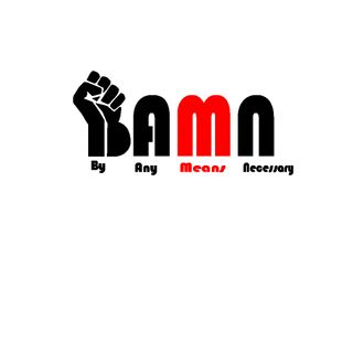 BAMN 11-14