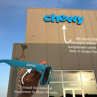 Chewy blue sunglass