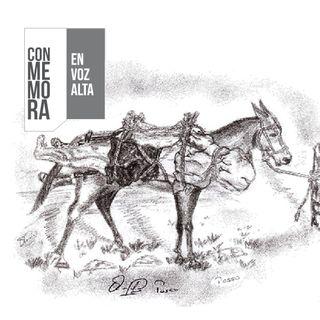 Conmemora en Voz Alta - Mampuján, Las Brisas: La ruta del terror en los Montes de María
