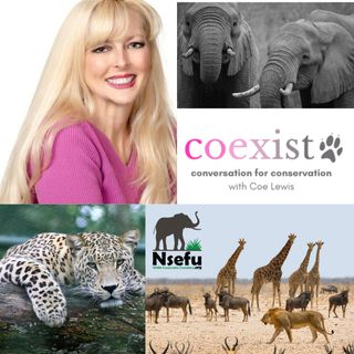 Lobbyist for the Animal Welfare Institute, Dr. Joanna Grossman with Coexist Ep. 185
