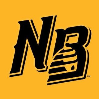 NB Bees Manager Mauro Gozzo 4/29