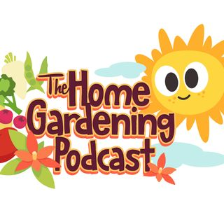 Home Gardening with Voan and Glenn