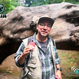 NUESTRO OXÍGENO Parque ecológico Cayalá Guatemala - Manuel Girón