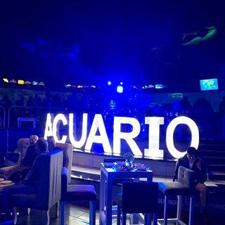Hacen fiesta en el Acuario de Veracruz