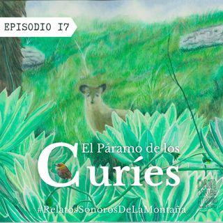 EP 17: El páramo de los curíes