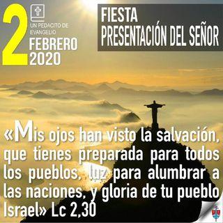 Homilía 2 Febrero 2020 - Una lección sobre cómo Cristo ilumina profundamente el corazón