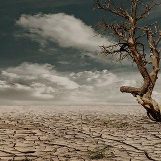 Para el 2050 la mitad de la Tierra será inhabitable