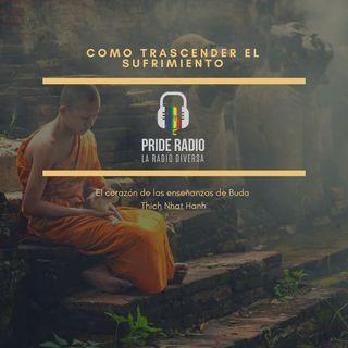 Como Transformar el Sufrimiento (el camino del Buda) 1era parte