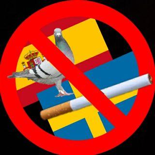 #rivaligure basta fumo e piccioni!
