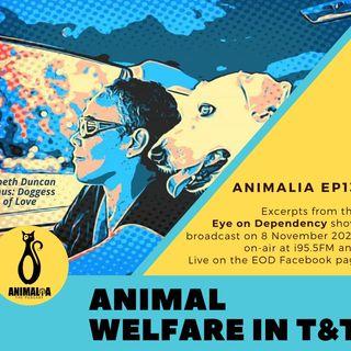 ANIMALIA 13 - Animal Welfare on EOD - 13Nov20