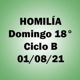 Homilía. Domingo 18 durante el año. 1/08/2021. P. A.