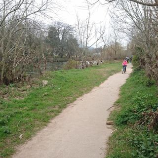 Sunday walk along the Suir