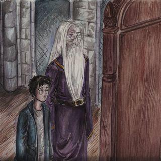 Harry Potter cap. 12