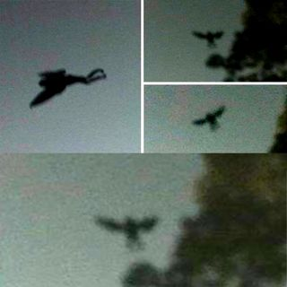 Chernobyl staff 'saw infamous Mothman flying over reactor' just before deadly explosion